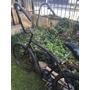 Bicicleta Playera Rod 26 , Manubrio Retro Chopera