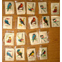 Sobres De Azucar Pajaros Aves X 18 Excelente Coleccion