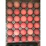 Huevos De Campo Venta Por Maple Gallinas Criadas En Libertad