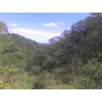 Vendo O Permuto: 10000 M2 Terreno Sobre Cerro Uritorco.