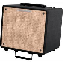 Ibanez T80 Amplificador Para Guitarra Acustica 80 Watts 2 In
