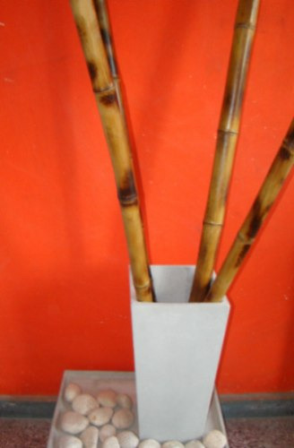 Ca as tacuara quemadas 1 5 mt decoracion maceta - Macetas fibrocemento ...