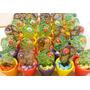 10 Cactus En Vitrofusion,souvenirs Cumpleaños Y Casamientos