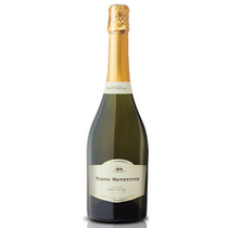 Champagne Nieto Senetiner Brut Nature