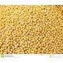 Mostaza Amarilla En Grano Importada X 1 Kg