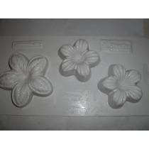 Placa Molde Para Jabones De Flores