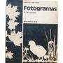 Fotogramas / P. Bruandet