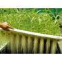 Manual Hidroponia Cultivos Hidroponicos + Regalos