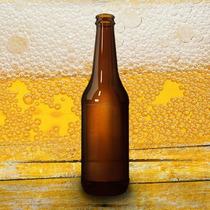 Envases Cerveza 355cc X 24