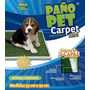 Pañopet Carpet Mini Cesped Sintetico Educativo