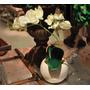 Orquídea En Maceta De Cerámica