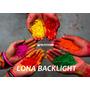 Impresión - Lona Backlight