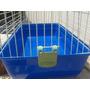 Cobayera Jaula Cobayo R2 Conejo Importada Pet Shop Beto