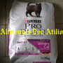Proplan Gato Urinary X 15 K..envio Gratis Capital Federal