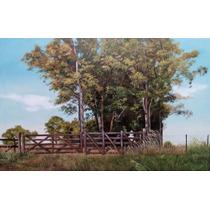 Óleo Sobre Lienzo, Original. Pintura De Campo.