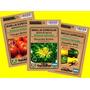 Semillas Orgánicas Para Brotes - 22 Variedades En Sobres