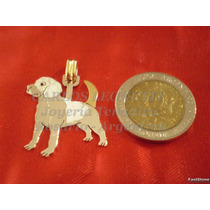 Beagle - Dije Plata 925 - Oro 18k