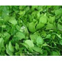 Sales Minerales - Hidroponia 20000 Lts- Solucion Nutrientes