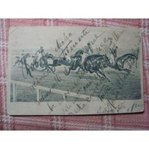 Antigua Postal Caballos Cuadreras 9 X 14 Cm