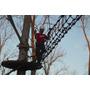 Construccion De Circuitos Aéreos Arborismo Muros De Escalada