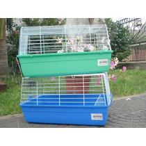 Pet Shop Beto - Coballera Para Cobayos O Conejos R1 Y T1