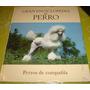 Gran Enciclopedia Del Perro - Perros De Compañia (vol 15)