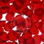 Pétalos De Rosas Evento Decoración Souvenir Bolsa 200gr