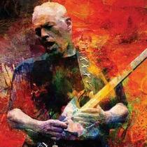 David Gilmour Exclusiva Entrada Vip Numerada Bronce