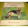 Gran Enciclopedia Del Perro - Perros De Pastor (vol 01)