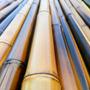 Cañas De Bambu Tacuara Decoracion Paq 10u X 2 Mts Quemada