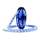 Tira Led N2m-electrónica 5050 Azul 5m 12v Ip20