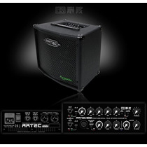 Amplificador Para Acustica Multifunción Artec A100ts