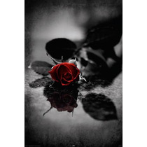 Poster De Fantasia - Red Gothic Rose - 40 X 50 Cm