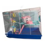 Hamstera Con Casita Y Tubos