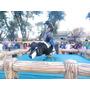 Alquiler Toro Mecanico,gladiador,cama Elastica 155825-0193
