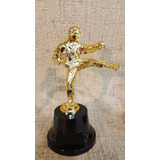Trofeo Plástico Karate Taekwondo Artes Marciales Alta Souv