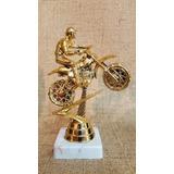 Trofeo Plástico Moto Motocross - Souvenir