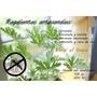 Repelente Natural - Sin Tóxicos - Con Atomizador - Envios