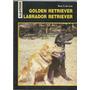 Golden Retriever Labrador Retriever Rosa T De Azar