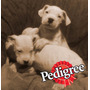 Ultimo Dogo Argentino 12x0 Intereses - Powered By Pedigree<br><strong class='ch-price reputation-tooltip-price'>$ 5.000<sup>03</sup></strong>