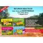 Libro Para Colorear Recursos Didácticos Biodiversidad