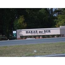 Haras Del Sur. Terrenos