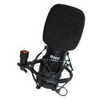 Microfono Condenser Grabacion Profesional Moon Ms01 - Alma