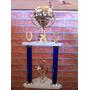 Trofeos Y Medallas Excelentes Para Todas Las Disciplinas