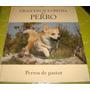 Gran Enciclopedia Del Perro - Perros De Pastor (vol 03)