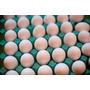 Huevos Blancos Por Cajon En Maples Con Entrega