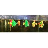 Peces Flotantes !!! Colores Increibles !!! Souvenirs Acuario