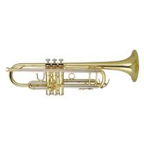 Trompeta Wisemann Dtr 250 Bb Audiomasmusica