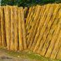 Cañas De Bambu Tacuara 50 Unidades 2.5 Cm X 2.20 Mts Largo