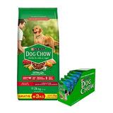 Dog Chow Adulto Mediano Grande X 21 + 3 Kg
